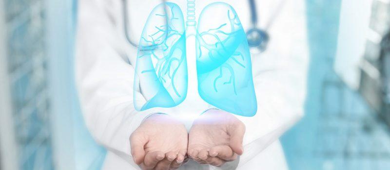 apparato-respiratorio